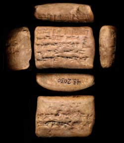 WALTERS: Babylonian: Economic Document -561
