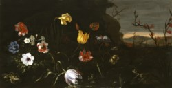 WALTERS: Giuseppe Recco (Italian, 1634-1695): Flowers by a Pond with Frogs 1670