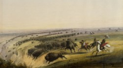 WALTERS: Alfred Jacob Miller (American, 1810-1874): Hunting Buffalo 1858