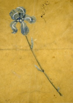WALTERS: George Paulding Farnham (American, 1859-1927): Sketch for the Tiffany Iris Corsage Ornament 1888