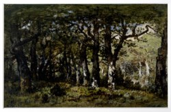 WALTERS: Narcisse Virgile Diaz de la Peña (French, 1807-1876): Edge of the Forest 1848
