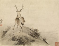 WALTERS: Gao Qipei (Chinese, 1660-1734): Stag 1713