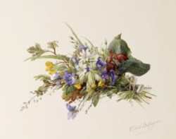 WALTERS: Gerardina Jacoba Van De Sande Bakhuysen (Dutch, 1826-1895): Bouquet of Wildflowers 1863