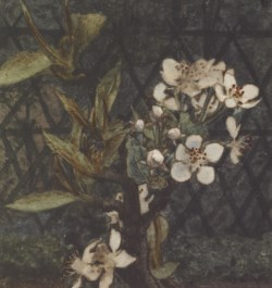 WALTERS: Léon Bonvin (French, 1834-1866): Apple Blossoms 1863