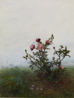 WALTERS: Léon Bonvin (French, 1834-1866): The Rosebush 1863