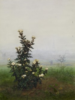 WALTERS: Léon Bonvin (French, 1834-1866): Flowering Chrysanthemum 1863