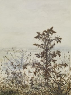 WALTERS: Léon Bonvin (French, 1834-1866): Thistles and Weeds 1864