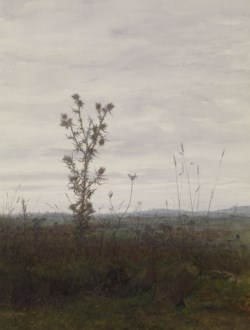WALTERS: Léon Bonvin (French, 1834-1866): Landscape with Thistle and Weeds 1864