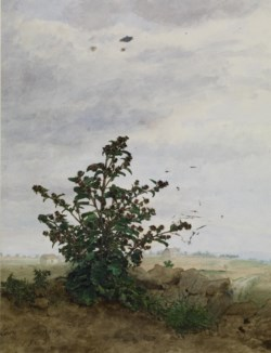 WALTERS: Léon Bonvin (French, 1834-1866): Thistle Bush with Farm 1863