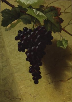 WALTERS: Andrew John Henry Way (American, 1826-1888): Bunch of Grapes 1870