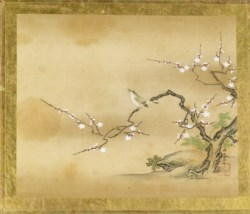 WALTERS: Kano Toshun (Japanese, 1747-1797): Bird in Prunus Tree 1747