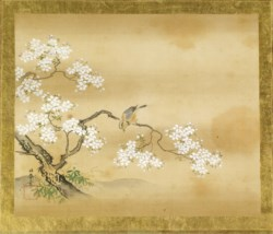 WALTERS: Kano Toshun (Japanese, 1747-1797): Bird in Cherry Tree 1747