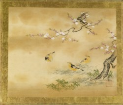 WALTERS: Kano Toshun (Japanese, 1747-1797): Yellow Birds and Peach Tree 1747