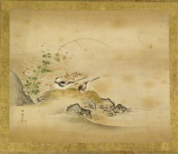 WALTERS: Kano Toshun (Japanese, 1747-1797): Wagtails and Mums 1747