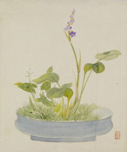 WALTERS: Yoshizawa Setsuan (Japanese, 1809-1889): Leaf from Album Depicting Birds, Flowers, Landscapes, and Flower Pots 1876