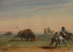 WALTERS: Alfred Jacob Miller (American, 1810-1874): Buffalo Turning on His Pursuers 1858