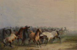 WALTERS: Alfred Jacob Miller (American, 1810-1874): Wild Horses 1858