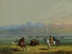 WALTERS: Alfred Jacob Miller (American, 1810-1874): Wounded Buffalo 1858